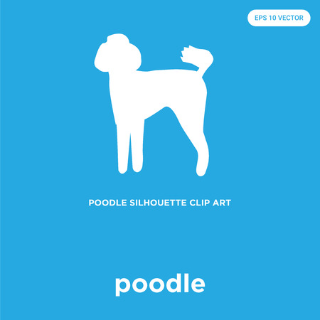 poodle vector icon isolated on blue background, sign and symbol