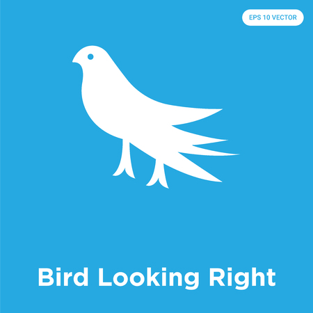 Bird Looking Right vector icon isolated on blue background, sign and symbol Vectores