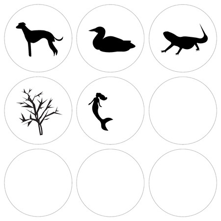 Set Of 9 simple editable icons such as mermaid, f16, pitbull face, mesquite tree, bearded dragon, loon, whippet, minneapolis sky, cincinnati can be used for mobile, web