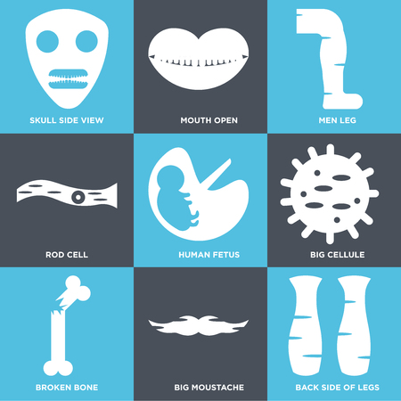 Set Of 9 simple editable icons such as Back Side Legs, Big Moustache, Broken Bone, Cellule, Human Fetus, Rod Cell, Men Leg, Mouth Open, Skull View, can be used for mobile, web