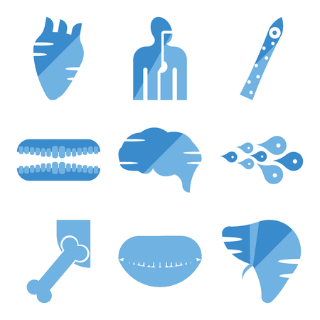 Set Of simple editable icons such as Human Liver, Mouth Open, Hip Bone, Skin Cells, Brain, Teeth, Cone Cell, Digestive System, Heart, can be used for mobile, web.