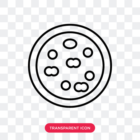 Pizza vector icon isolated on transparent background, Pizza logo concept 向量圖像
