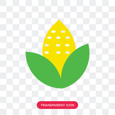 Ear of Corn vector icon isolated on transparent background, Ear of Corn logo concept