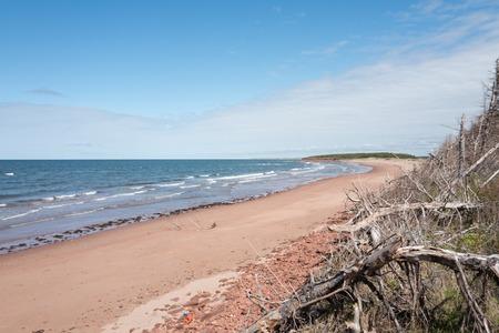coast of prince edward