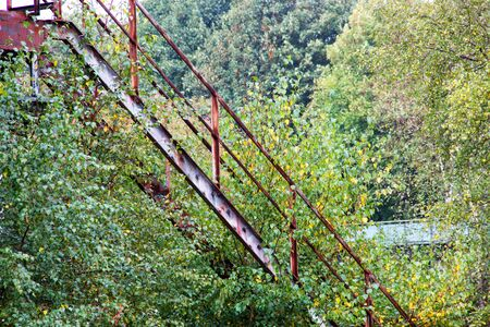 back to nature, overgrown steel staircase
