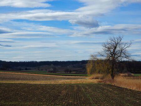 Rural scene in autumn and cloudy sky Stok Fotoğraf