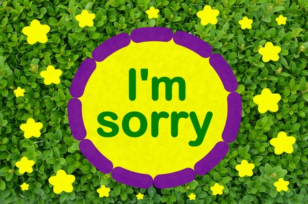 I am sorry message over green leaf background Stock Photo