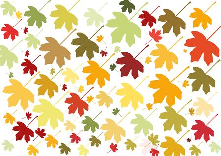 cor: Colorful autumn leaves pattern