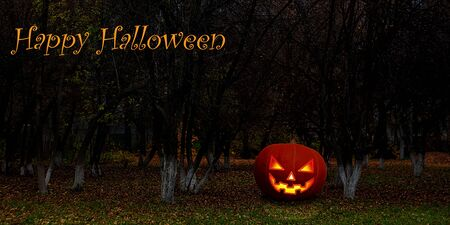 Halloween background wallpaper with pumpkin jack lantern. The sinister eyes of a pumpkin. Halloween Mystical Jack O. Pumpkin Lantern in the Forest. Spooky Halloween Poster. Halloween party. Autumn festival. Banner. 免版税图像