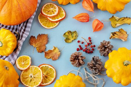 Bright autumn background. Top view of a white and brown checked kitchen towel, orange pumpkin, yellow squash, autumn leaves, physalis, cones, dried orange slices, flat lay, thanksgiving concept Banque d'images - 135237327