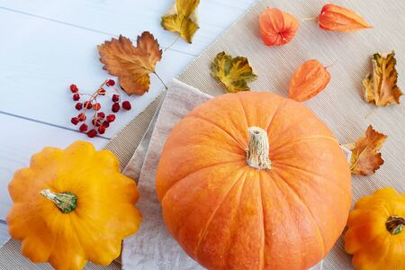 Bright autumn background. Top view on orange pumpkin, squash, autumn leaves, physalis, flat lay, thanksgiving concept Banque d'images - 135237257