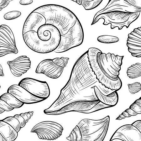 Conchas marinas esboza el modelo inconsútil blanco y negro