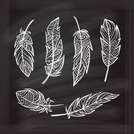 hand drown: Vector hand drown patterned feathers in zendoodle style on a chalkboard background.