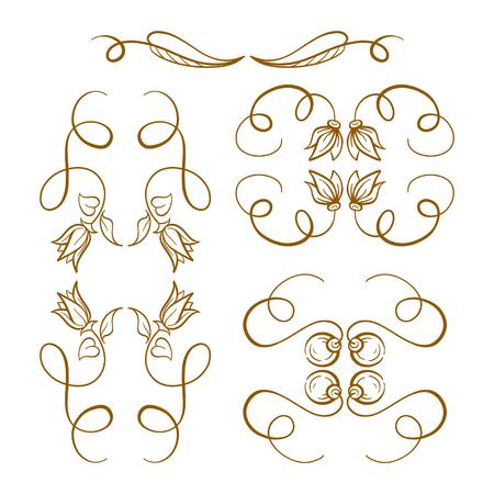 penmanship: Set of elegant floral elements for your design Illustration