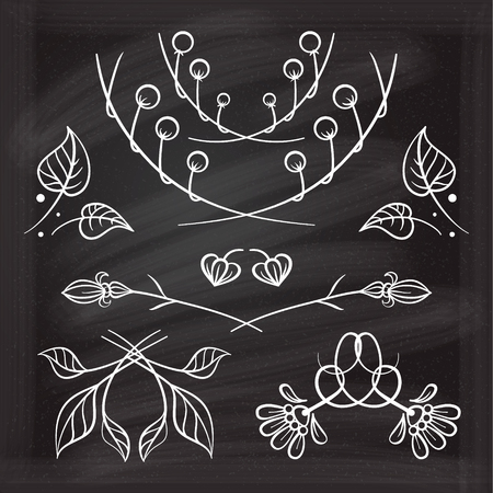 Set of hand drawn floral elements on the chalkboard. Illustration