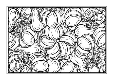 Black and white autumn ornament. Pumpkins and autumn leaves Thanksgiving Day coloring page Vector Illustratie