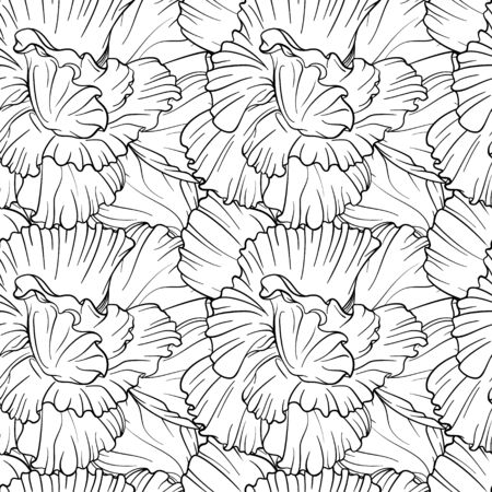 Black and white vector poppy flowers seamless pattern Illustration