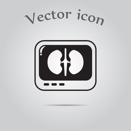 medical scans: X-ray of kidney. icon. Illustration
