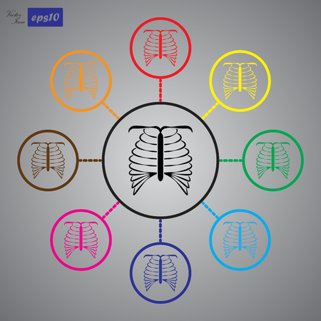 rib cage: human chest icon