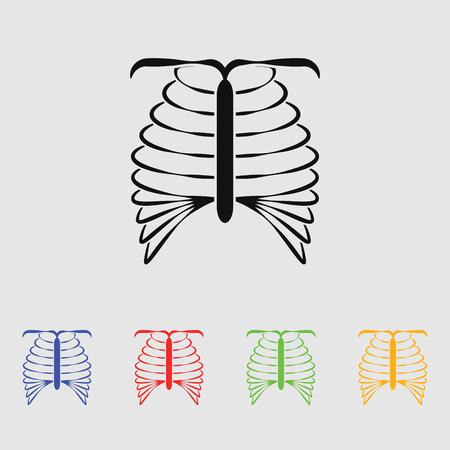 vertebra: human chest icon