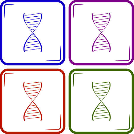 human chromosomes: Vector DNA icon Illustration