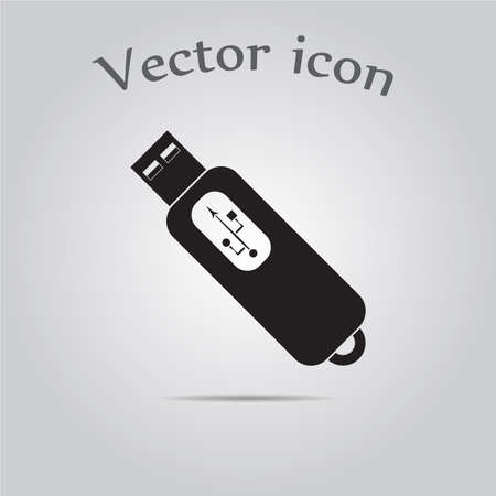 flash drive: flash drive icon