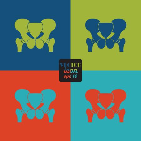 pelvis: Anatomy Pelvis. Icon Illustration