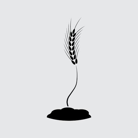 bedrock: wheat ears symbol vector Illustration