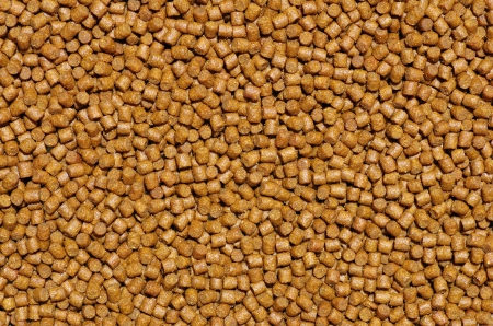 Pellets - Close-up on animal food photo