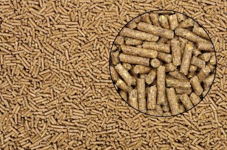 marrón: Primer en alimentos de origen animal con lupa