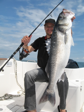 Lucky  fisherman holding a large sea bass