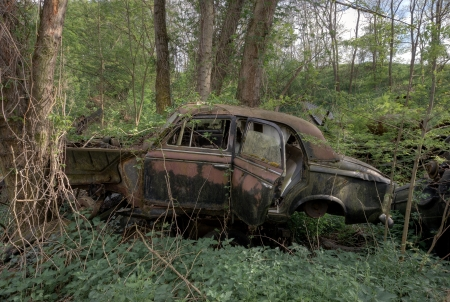 abandoned car: Abandoned rusty car in the forest