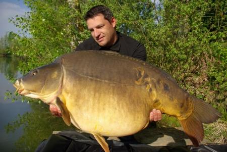 Catch and release - Happy  fisherman holding a giant mirror carp Archivio Fotografico