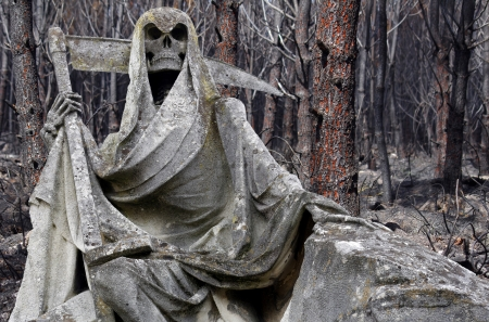 Grim reaper statue with damaged forest in background