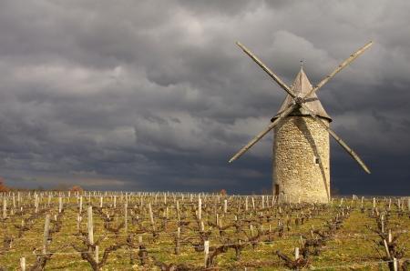 フランスの風車。Courrian の風車はフランス南西部、アキテーヌ地域圏、ジロンド県の位置します。 写真素材