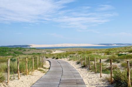 Seascape  Large view on pyla dune  Aquitaine, france