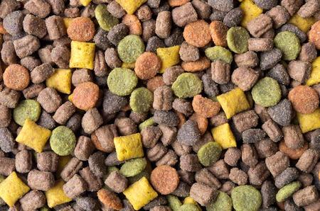 cat food: Close up on cat food