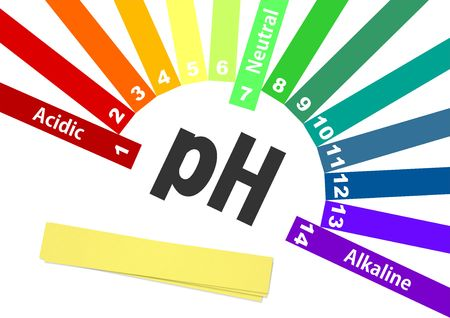 ph scale. acid-base balance. scale for chemical analysis acid base. colorful graph for test Stock Photo