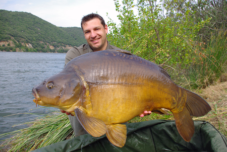 lucky fisherman holding a giant leather carp Standard-Bild