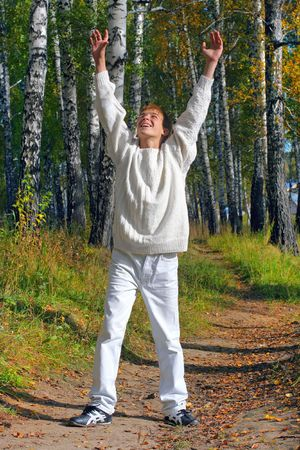 brich: happy boy stand in autumn forest with hands up Stock Photo