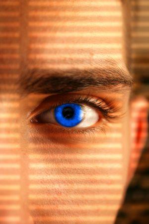 eye wacher looking through a lattice of a shadow Stock Photo - 2135409