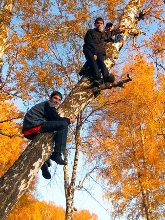 brich: The boys gets on a birch in an autumn forest