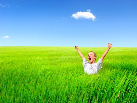 El niño feliz en un campo de verano de