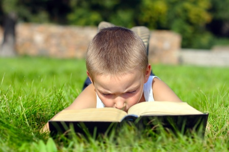 prodigy: The child attentively reads the book on a summer meadow Stock Photo