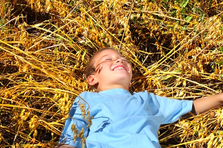 happy boy resting in the wheat field photo