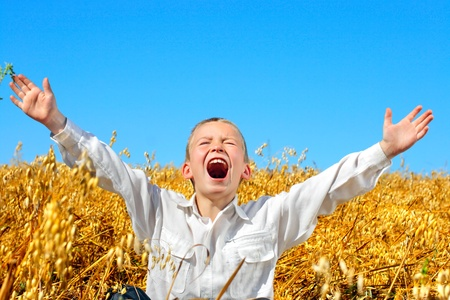 hands   free: kid in the wheat field