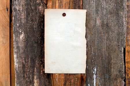 blank paper hanging on the wooden background Stock Photo - 10355134