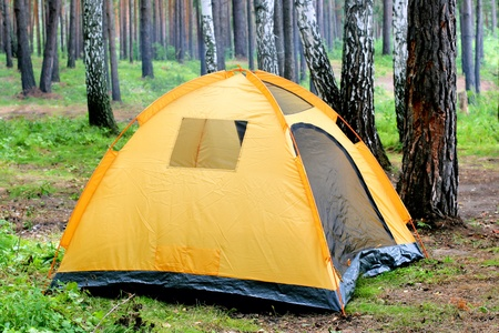tent in the forest in the summer day