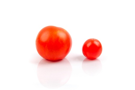 small and big tomato isolated on the white background photo