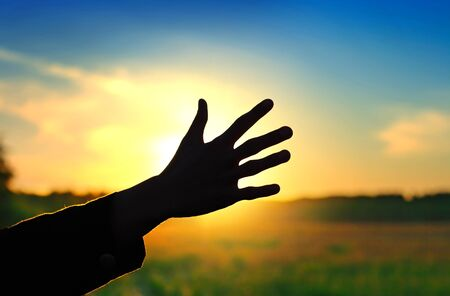 Silhouette of a Hand against a Sunset in the Summer Field Stock Photo - 17694053